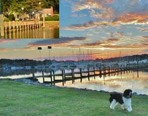 Swan Creek Waterfront